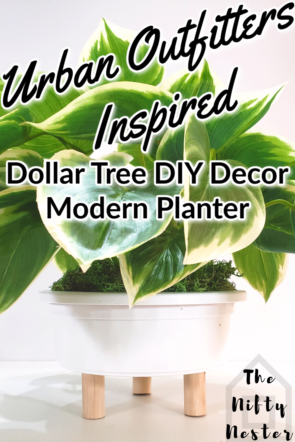 urban-outfitters-dollar-tree-diy-pin